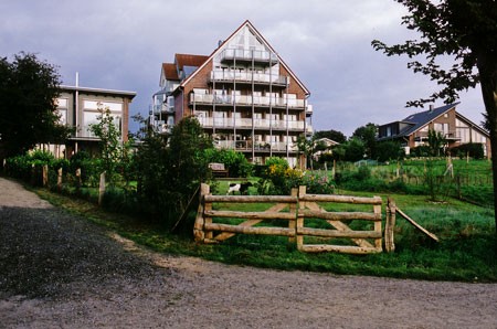 bordesholmersee_ziege_2009.jpg