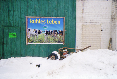 schonbek_kuhlesleben_2010.jpg